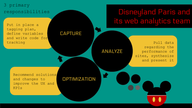 role of web analyst